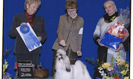 GCH Amitzu China's Got the Look